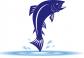 Cá hồi tươi
